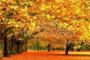hello-november-fall